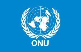 Sortie à l'Organisation des Nations Unies (Genève)